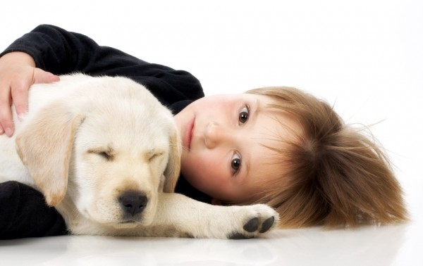 Pies dla dziecka - jaką rasę wybrać?